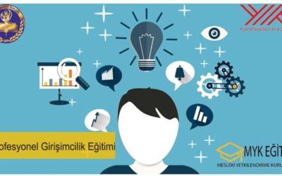 Profesyonel Girişimcilik Eğitimi