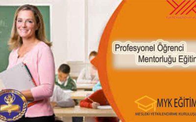Profesyonel Öğrenci Mentörlüğü Eğitimi